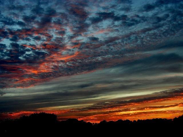 December red sky1204.JPG