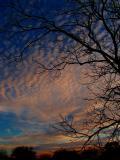 1-14-05 Cirrocumulus Sunset