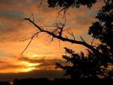 6-2005 Sunrise.JPG