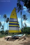 catamarran on the beach
