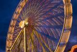 Wonder wheel 2