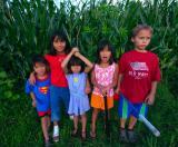 july 27 corn
