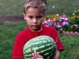 aug 26 watermelon