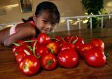 sep 2 tomatoes