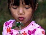 sep 8 weed flower