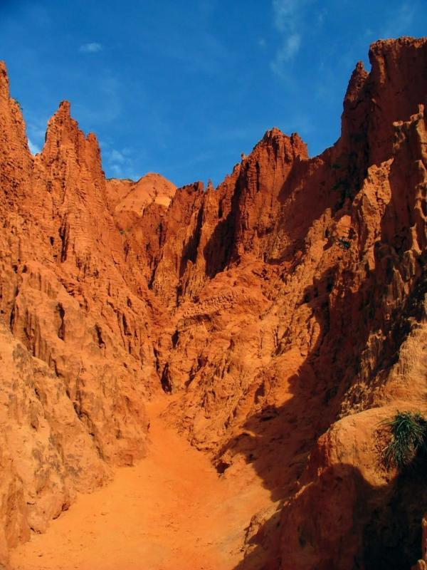 Path Through the Canyon