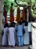 A Rare Glimpse of Monks