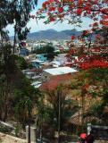 Nha Trang from Above