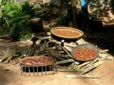 Sun-Dried Chillies