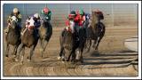 Fairmount-Race_D2X_6229.jpg