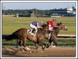 Fairmount-Race_D2X_6238.jpg