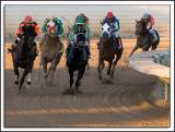 Fairmount-Race_D2X_6262-2.jpg