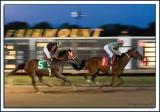Fairmount-Race_D2X_6298.jpg