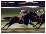Fairmount-Race_D2X_6374.jpg