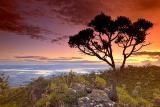 delfinopolis-sunset.jpg