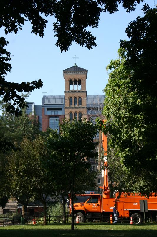 Judson Church , NYU Law School and Tree Surgery