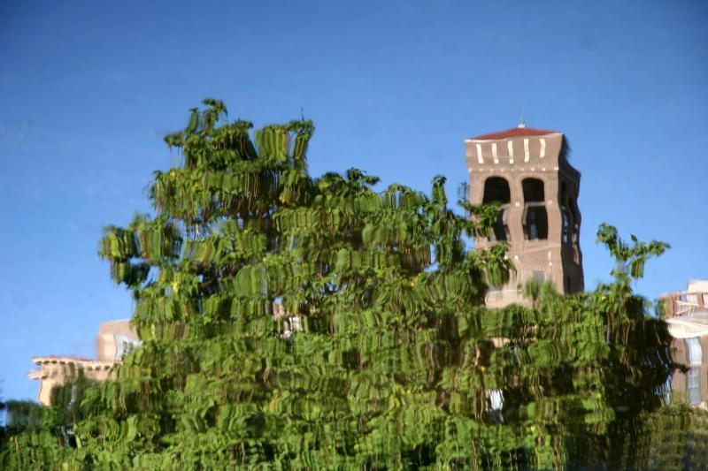 Reflection - Florentine Tower & Catalpa Tree