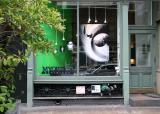 Myoptics Store