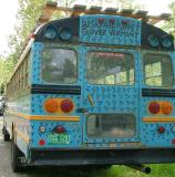 Newest Bus