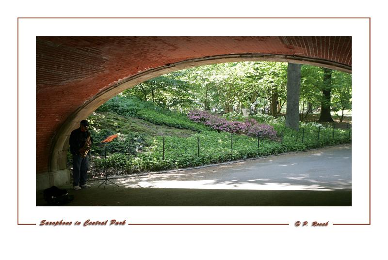 Saxophone in Central Park NY