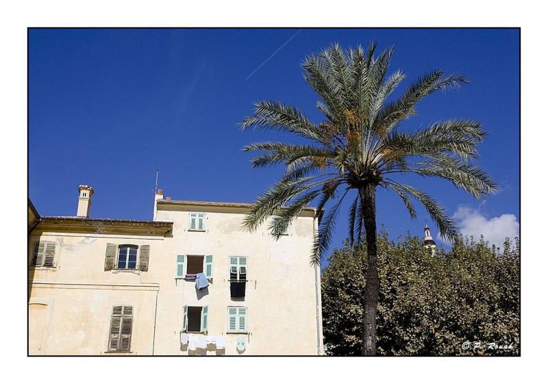 St Michel sous palmier 2