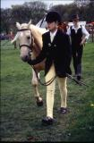 Walking the Horses