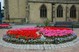 Flower Beds in Stalybridge