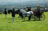 One of the Horse and Cart Entrants