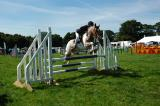 Another Show Jumping Entrant