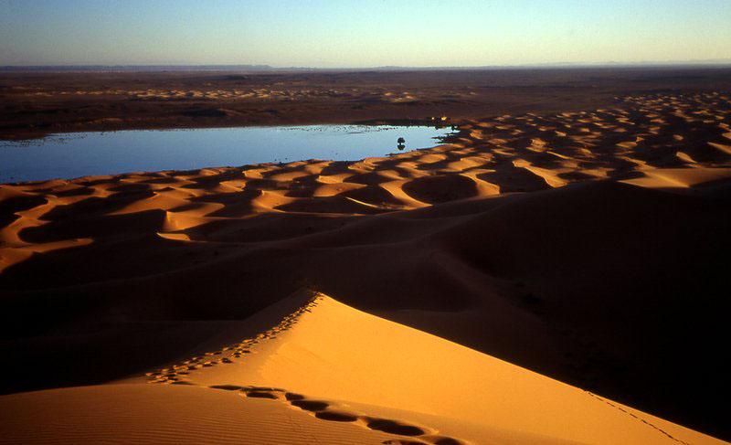 Saharan dune Morocco