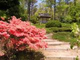 Mytoi Gardens.JPG