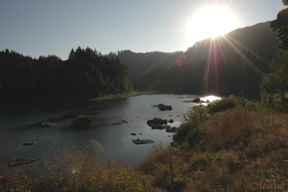 Summer Sun (08-24-05)