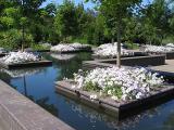 Reflecting Garden