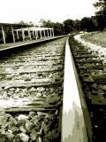 Railroad Track/ 12 June 05