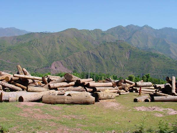 Jehlum Valley