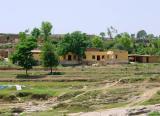 Dhamal