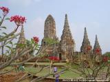 Wat Chai Watthanaram, Ayutthaya - Thailand