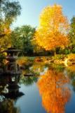 KyotoGarden.jpg