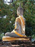 Buddhas back