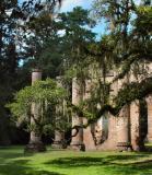 oak view 1.jpg