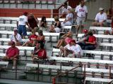 Miami Fans Pregame