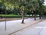 Burnett Plaza Park