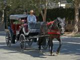 Horse & Buggy In Old Town