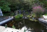 Kathy & Tom's Pond
