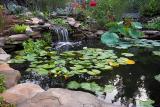 Morning Pond