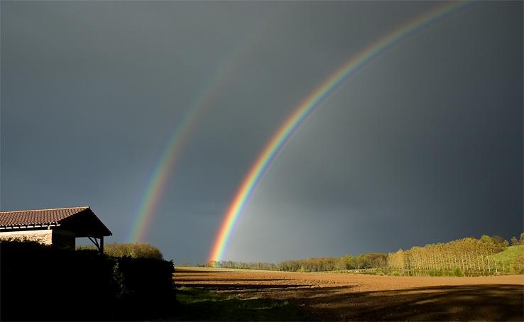 An Illumination of Rainbows *