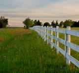 A Row of Fence
