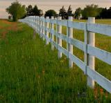 A Row of Fence II