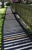 Shadow Fence II *