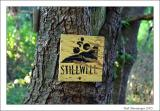 A pictorial of the Stillwell Woods Biking trail